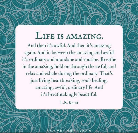 Life Is Amazing quote